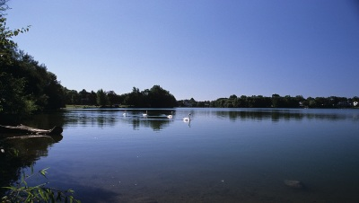 photo at Spy Pond Arlington MA by Arun Shanbhag