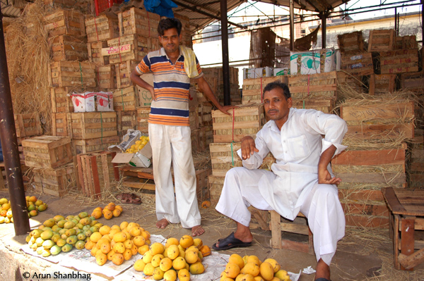 Crates of Aapus Mangoes at Jyotiba Phule Mandi, Crawford Market by Arun Shanbhag