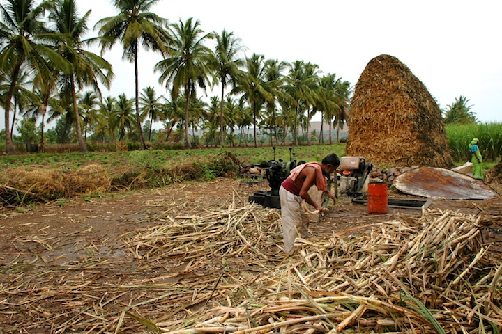 Pictures of the making of jaggery or fur by Arun Shanbhag