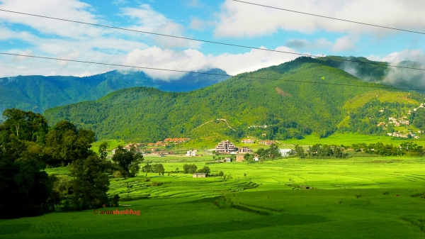 photos of Emerald green fields enroute Kathmandu to Kodari by Arun Shanbhag