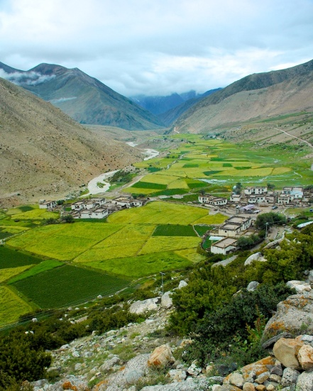 photos of Green fields in the Tibetan Valley by Arun Shanbhag