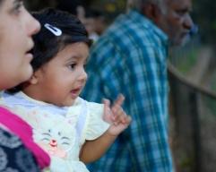 Photos of Meera at the Jijamata Zoo Ranibaug in Mumbai by Arun Shanbhag
