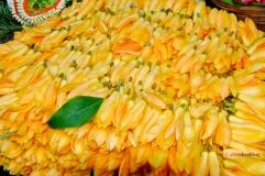 Pictures of Champae (Michelia Champaca) plumeria by Arun Shanbhag