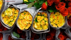 pictures of packed yellow roses at the Dadar Flower Market, Mumbai by Arun Shanbhag