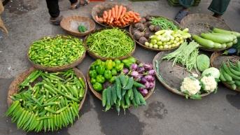 Tender Bhendi, tindora, karelas, cauliflowers and gajjar