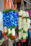 Flowers at the Matunga Flower Market by Arun Shanbhag