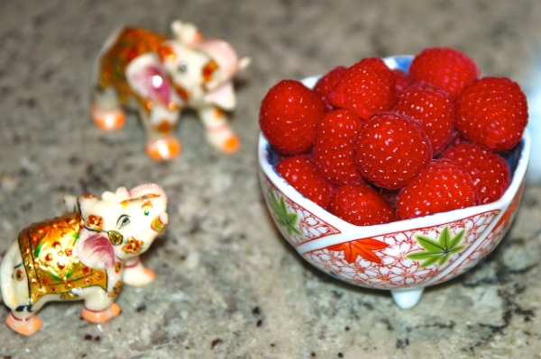 Marble Elephants ogling and Raspberries by Arun Shanbhag