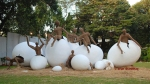 Pics of The Earth is an Egg, Exhibit at the Shivaji Museum, Mumbai by Arun Shanbhag