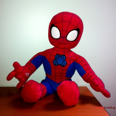 Pic of Meera's Spiderman by Arun Shanbhag