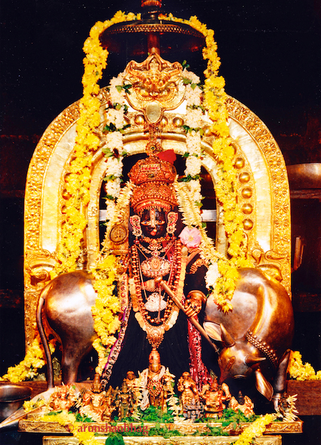 Murti of Udupi Shri Krishna with Alankar during Paryaya