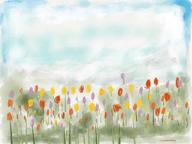 sketch of Tulips by Arun Shanbhag