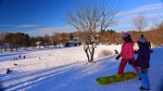 pics of Meera sledding in the snow in Boston by Arun Shanbhag