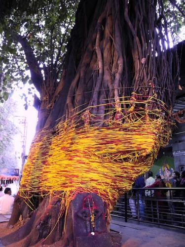 Banyan Tree at Sita Gufa cave in Panchavati, Nashik by Arun Shanbhag